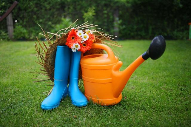 Jak zatroszczyć się o ogród